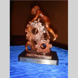 Events - Lifetime Achievement Award - British Toy & Hobby Association - May 24th 2007 - http://www.hilarypagetoys.com