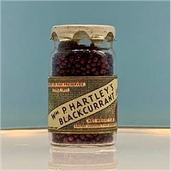 Miniatures - Specials - Hartley's Blackcurrant Jam (S109) - http://www.hilarypagetoys.com
